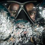 Diver Scuba Underwater Ocean Sea  - 272447 / Pixabay