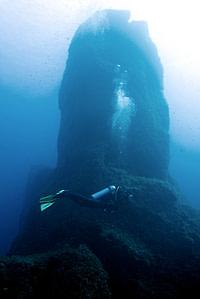 Reqqa point pinnacle sito d'immersione Gozo Malta