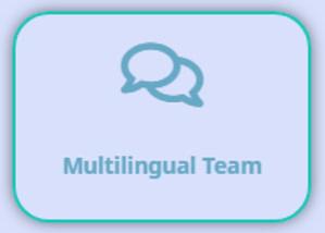 multilingual team