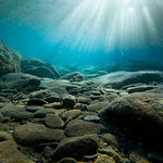 subacqueo Gozo Malta