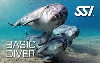 Basic Diver Course