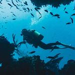 Gozo Malta immersioni in grotta