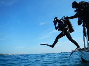 Sub Diving Scuba Giant Step Diver  - FIRSTonline / Pixabay
